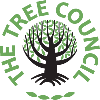 the-tree-counciltc2015trans